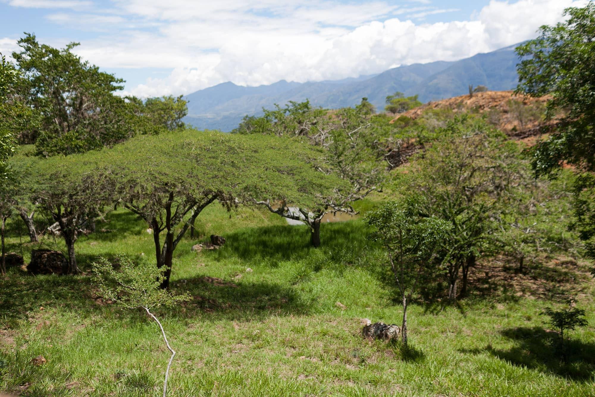 Camino Real - Barichara to Guane, Colombia