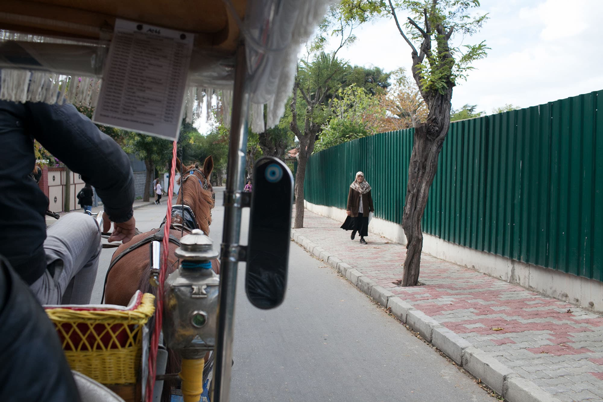 Taking a horse and carriage ride in Princes' Island, Istanbul, Turkey.