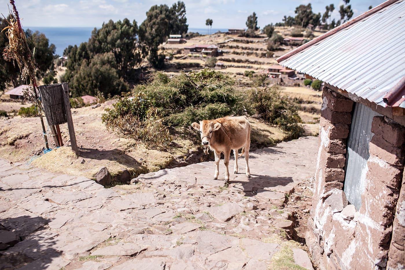 Taquile - Lake Titicaca Peru