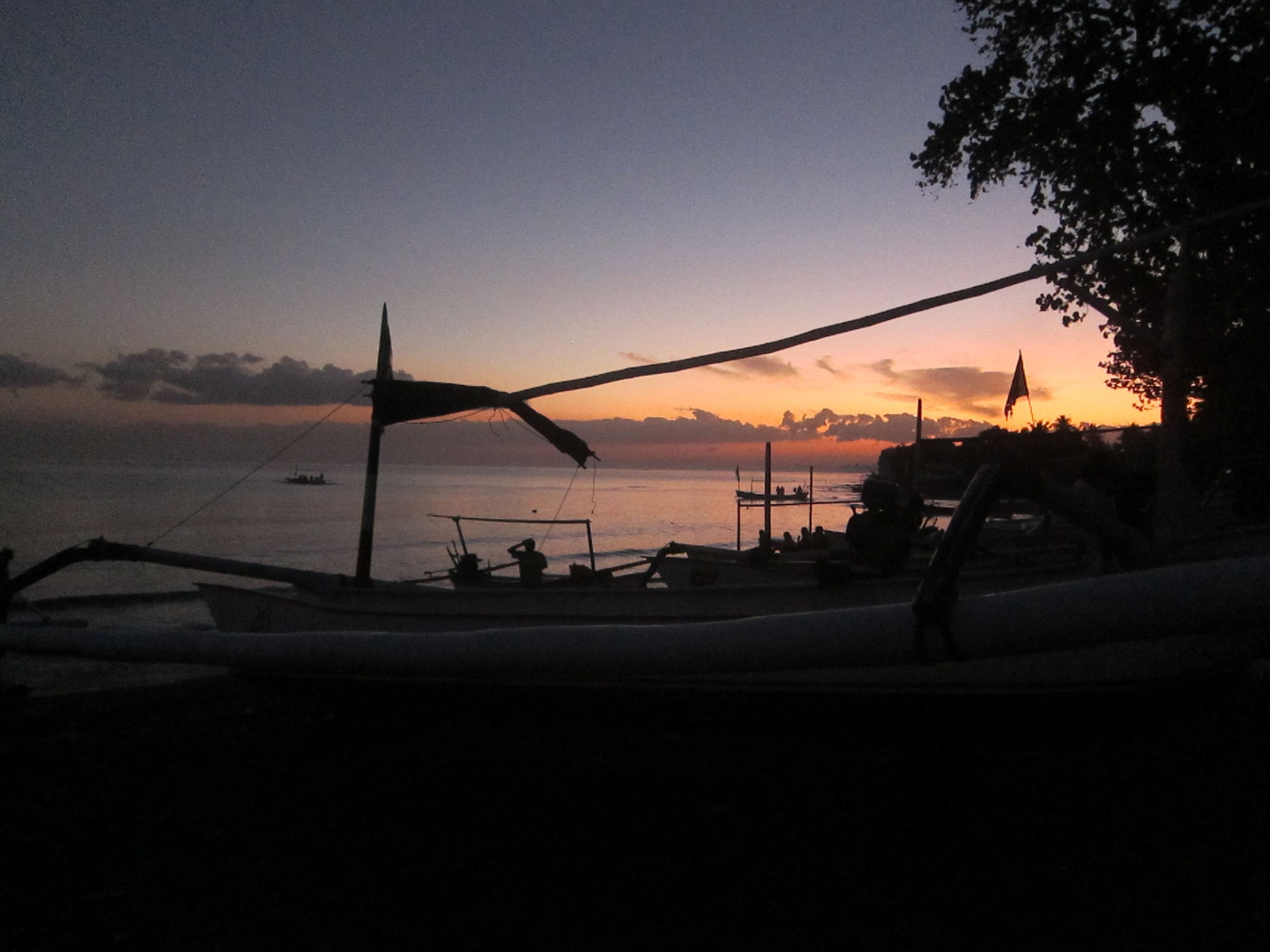 Dolphin watching in Lovina, Bali, Indonesia