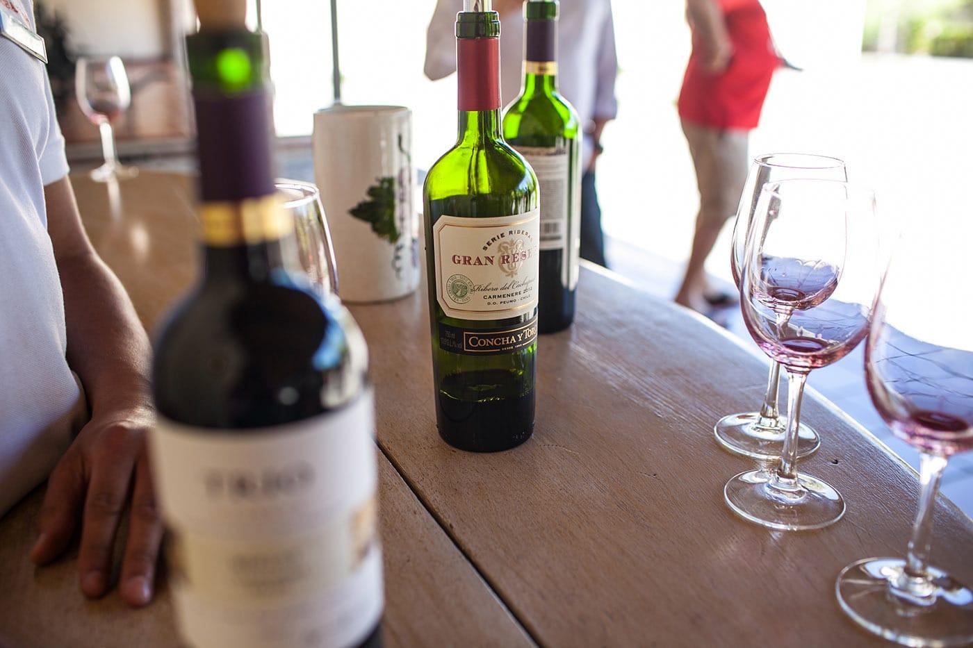 Concha y Toro wine tour in Santiago, Chile